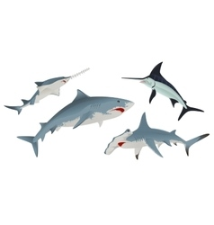 Set Fish sea animal vector image
