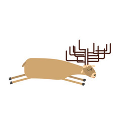 Sleeping deer wild animal sleeps sleepy moose vector