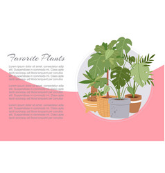 tropical house plants in pots vector image