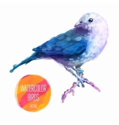 watercolor style of bird vector image