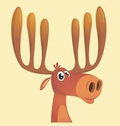 Cool carton moose vector