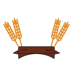 Isolated wheat ear with ribbon design vector image