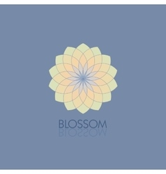 Geometric flower in fashionable colors Template vector image vector image