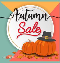 Autumn sale banner background design vector