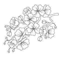Black-and-white sketch of a cherry blossom branch vector