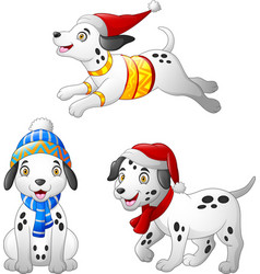 cartoon dalmatian dog wearing a winter hat and sca vector image