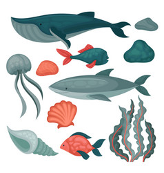 flat set of sea animals and objects big vector image