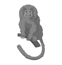 lion tamarin icon monochrome vector image