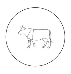Sick cow with bandage on a leg icon in outline vector