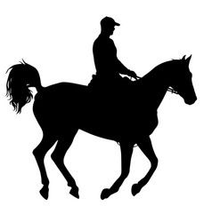 the black silhouette of horse and jockey vector image
