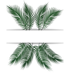 Tropical dark green palm leaves place for vector