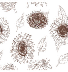 elegant floral seamless pattern with sunflower vector image vector image
