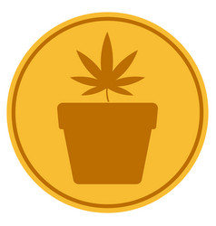 cannabis pot gold coin vector image