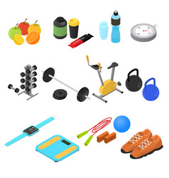 sport color icons set isometric view vector image vector image