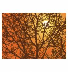 branches sundown vector image vector image