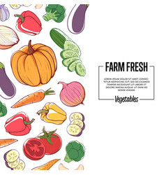 farm fresh banner with ripe vegetables vector image