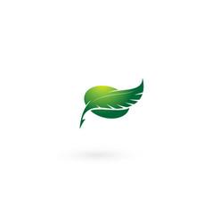 Feather leaf logo design template vector