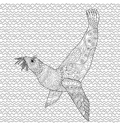 Hand drawn swimming seal with high details vector image