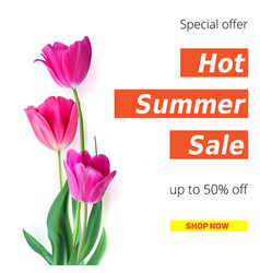 Hot summer sale banner with fifty percent discount vector