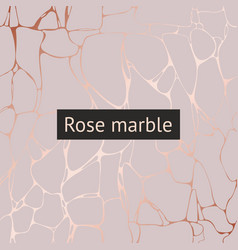 Rose marble decorative pattern for design and vector