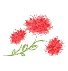 Three peonies on white background vector image