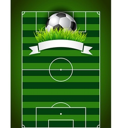 Football or soccer ball on green field background vector image vector image
