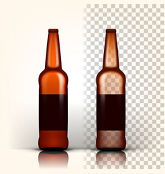 beer bottle product packing brown design vector image