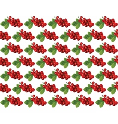 Cranberries Vintage pattern vector image