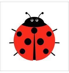 cute ladybug in flat style cartoon vector image