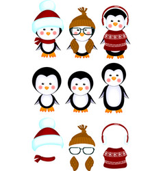 Cute penguins baby clothes vector