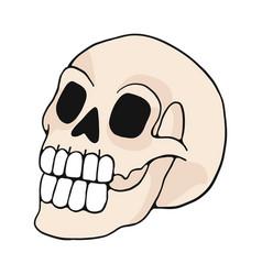 Human skull cartoon motif set vector