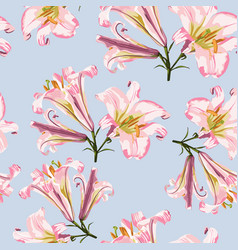 pattern with pink lilies and white flowers vector image