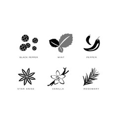 spices and condiments icons set black pepper vector image