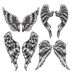 Wings bird feather black white tattoo set 1 vector
