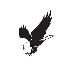 an eagle design on white background bird wild vector image