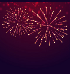 Beautiful fireworks display vector