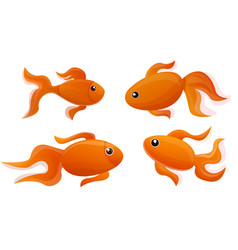 goldfish icon set cartoon style vector image