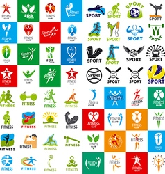 Large set of logos of sports and fitness vector