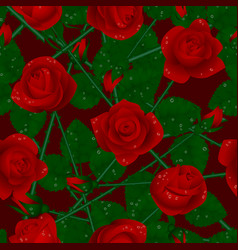 seamless pattern background with red roses vector image