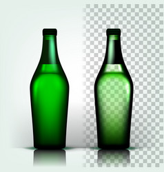 beer bottle craft cold drink brewery vector image