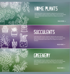 Bundle of web banner templates with houseplants vector