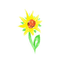 Hand painted watercolor growing flower sunflower vector