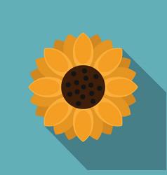 orange gerbera flower icon flat style vector image
