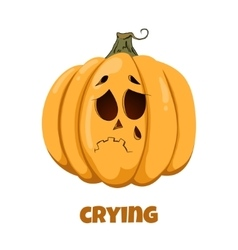 Pumpkin for Halloween Emotions Crying vector image
