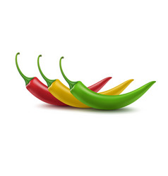 Set of Red Yellow Green Hot Chili Pepper Isolated vector