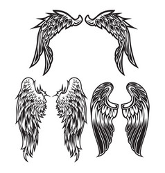 Wings bird feather black white tattoo set 6 vector