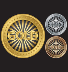 Golden silver and bronze empty coins vector image