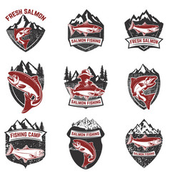 set of grunge badges with salmon fish design vector image