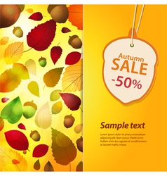 Autum sale label and background vector
