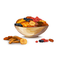 Dried fruits composition vector
